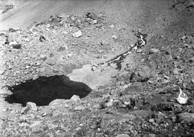 24 mažutis ežeriukas nusileidus nuo viršutiniosios Amšuto ? perėjos