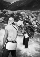 33 per upę, Alvidas, Dangira