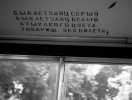 45 autobusu zuikiams