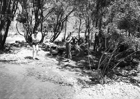 47 Pairono ežeras 1