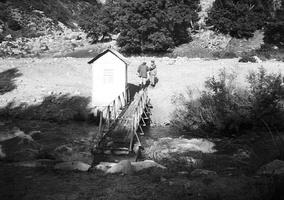 upė, tiltas, vadas