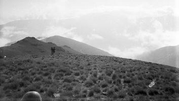 061 lipam kalnų fone