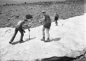 226 Naglis Šulija, obxss ant ledyno