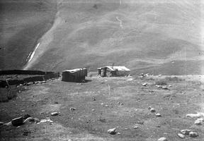 239 piemenų pastogės