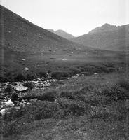 285 upelis