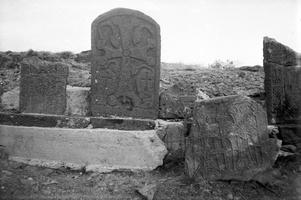 321 armėnų kryžiai prie Sevano