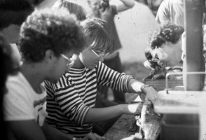 Paulius Kovas skrodžia žuvį