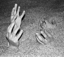grud rankos1