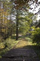 Botanikos sodas 2245