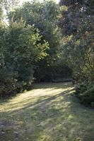 Botanikos sodas 2247