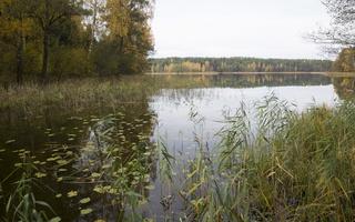 Molėtai · Želvos ežeras, ruduo 2298