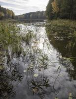 Molėtai · Želvos ežeras, ruduo 2300