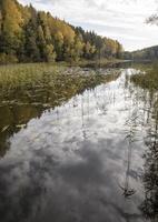 Molėtai · Želvos ežeras, ruduo 2302