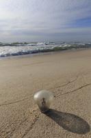 Juodkrantė · jūra, lemputė 2838