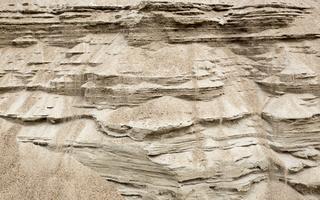 Juodkrantė · pajūris, smėlis 2874