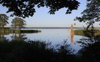 """Zigmunds Vilnis (Latvija) """"Neringa"""" 3290"""