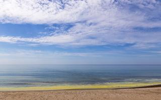 Juodkrantė · geltona jūra, pušų žiedadulkės, debesys 0471