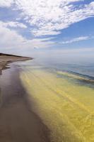 Juodkrantė · geltona jūra, pušų žiedadulkės, debesys 0477