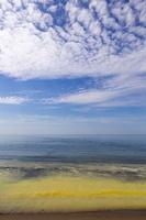 Juodkrantė · geltona jūra, pušų žiedadulkės, debesys 0479