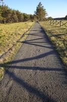 Juodkrantė · dviračių takas 0584