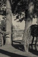 Juodkrantė · Gintaro įlankos skulptūros