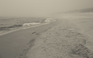Juodkrantė · jūra, rūkas 1249