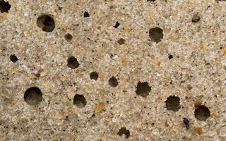 Juodkrantė · smėlis 1257