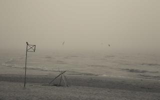 Juodkrantė · jūra, rūkas 1263