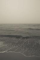 Juodkrantė · jūra, rūkas 1294