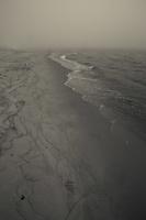 Juodkrantė · jūra, smėlis, rūkas 1295
