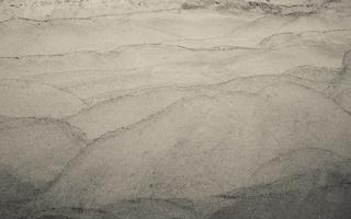 Juodkrantė · smėlis 1302