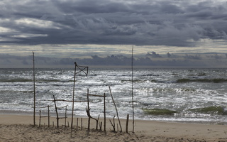 Juodkrantė · jūra 1446