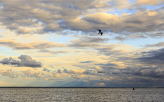 Juodkrantė · marios, debesys 1668