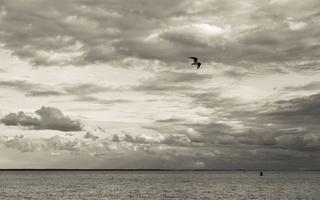 Juodkrantė · marios, kiras, debesys 1668
