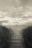 Juodkrantė · marios, nendrės, debesys 1669