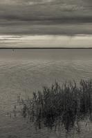 Juodkrantė · marios, nendrės, debesys 1691