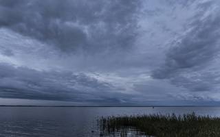 Juodkrantė · marios, nendrės, debesys 1696