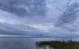 Juodkrantė · marios, nendrės, debesys 1697