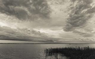 Juodkrantė · marios, nendrės, debesys 1698
