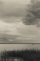 Juodkrantė · marios, nendrės, debesys 1699