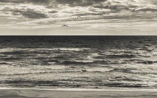 Juodkrantė · jūra, debesys 1740