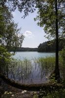Spindžiaus ežeras 3915