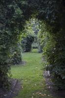 Botanikos sodas 4176