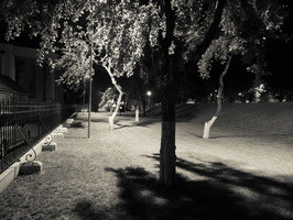 Bernardinų sodas naktį P1060533