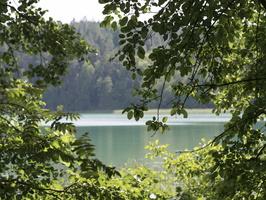 Spindžiaus ežeras P1060731