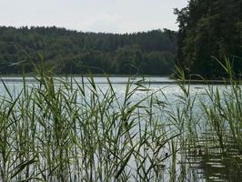 Spindžiaus ežeras P1060733