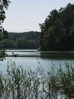 Spindžiaus ežeras P1060742