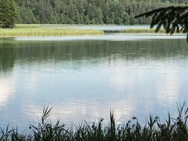 Spindžiaus ežeras P1060764
