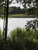 Kario ežeras P1060863