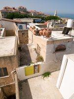 Jaffa, Tel Aviv P1020513